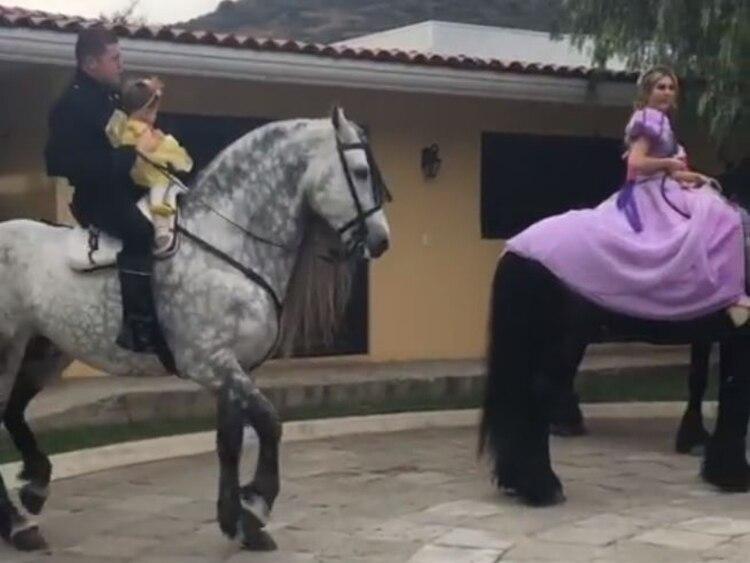 El caballo que montó durante la fiesta (Foto: Instagram/canelo)