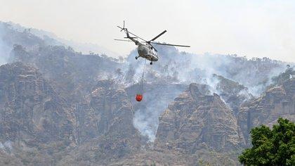 Por qué se originó el incendio forestal en Tepoztlán y cómo se perdieron más de 350 hectáreas