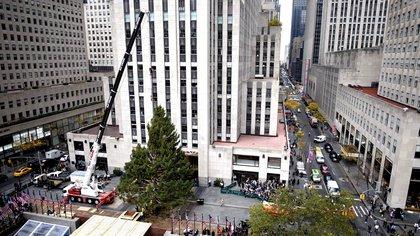 El abeto canadiense, de casi 23 metros de alto, viajó hasta la Gran Manzana desde la localidad de Oneonta, en la zona central del estado de Nueva York. EFE/Justin Lane/Archivo