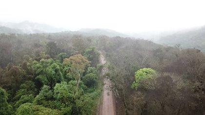 Calilegua es el único parque nacional de la provincia de Jujuy y todo su territorio