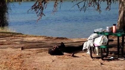 Momento en que sale del río y queda tendido semi inconsciente.