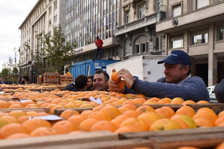 Miles de personas se acercaron a la Plaza de Mayo en busca de una bolsa de fruta