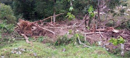 Las vías terciarias del municipio fueron afectadas por la emergencia invernal del municipio