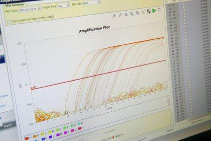En Lausanne, Suiza, estudian las curvas que produce la enfermedad en el país helvético. REUTERS/Denis Balibouse