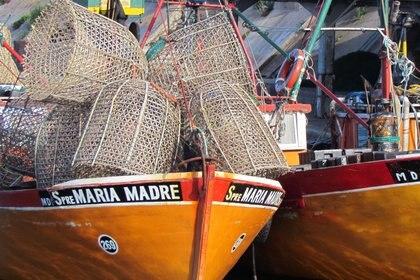 Mar del Plata fue uno de los primeros destinos turísticos elegidos por los argentinos para veranear, y el puerto es el corazón de la ciudad