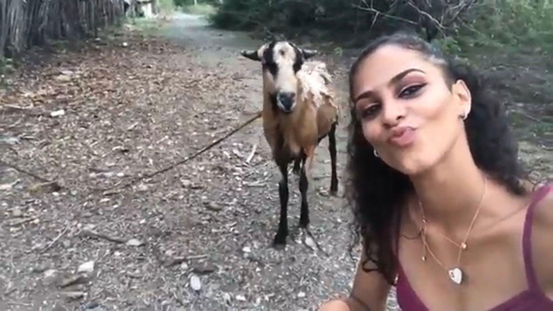 La joven, que no ha sido identificada, quería tomarse una fotografía al lado de la cabra (captura de pantalla)