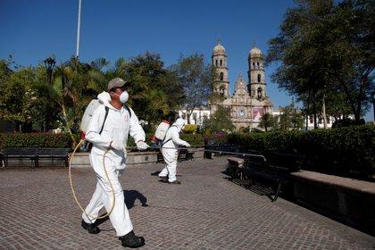 Dos hombres fumigan un parque en el municipio de Zapopan, estado de Jalisco (Foto:EFE/Francisco Guasco/Archivo)