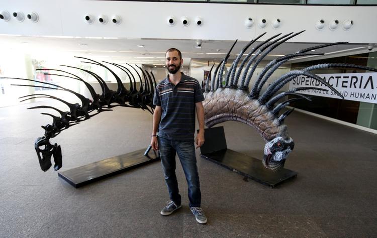 El paleontólgo Pablo Gallina expone el esqueleto del Bajadasaurus pronuspinax - REUTERS/Agustin Marcarian