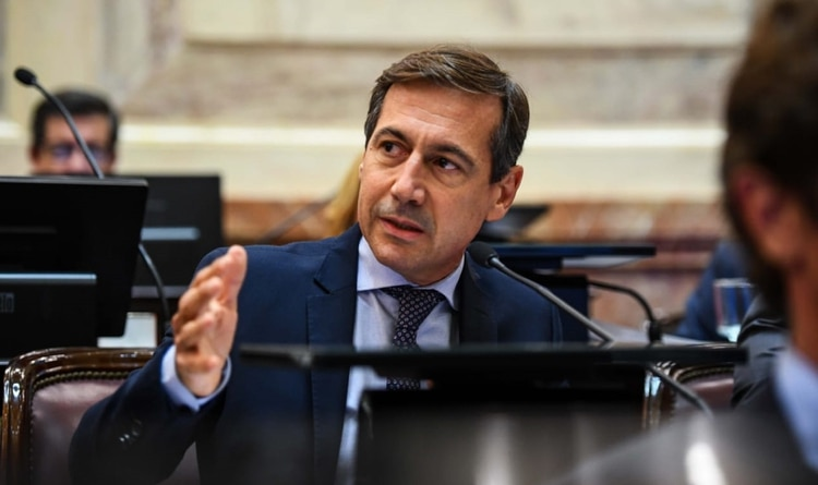 Luis Naidenoff, titular del Interbloque de Juntos por el Cambio
