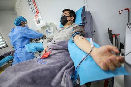 Aunque la estructura del virus indica que es poco probable que haya sido creado por el hombre, no es posible descartarlo. (STR / AFP) / China OUT)