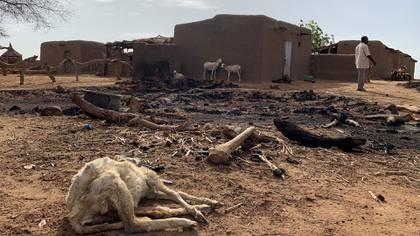 Un animal muerto, en medio de las ruinas que dejó el ataque en el pueblo dogón (Reuters)