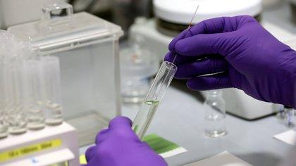 ¿La carga viral es un buen indicador de la infecciosidad presente en el organismo?