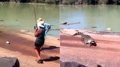Los cocodrilos macho de agua salada pueden llegar a crecer hasta 6 metros de largo y pesar más de una tonelada (Foto: captura de pantalla)