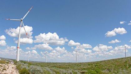 La meta del gobierno para 2024: la energía generada en el país procedente de fuentes limpias debe ser el 35% (Foto: Cuatoscuro)