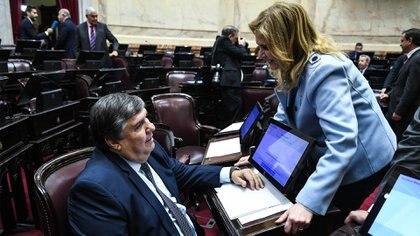 Mayans y su par radical Silvia Elías de Pérez, antes del debate en el Senado del proyecto de Interrupción Voluntaria del Embarazo, en agosto de 2018