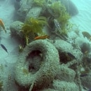 This undated photo provided by the California Coastal Commission/UC Davis shows a pile of scrap tires and other debris in the water off Balboa Peninsula in Newport Beach, Calif. Divers are removing hundreds of old tires, plastic jugs and other junk that were dumped off the Southern California coast nearly 30 years ago in hopes of creating an artificial reef that would serve as a home to fish and mussels. (California Coastal Commission/UC Davis via AP)
