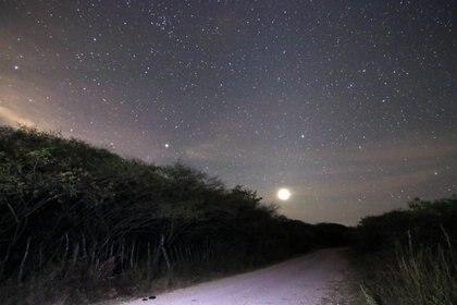 Se recomiendan lugares oscuros, alejados de la contaminación lumínica de las ciudades (Foto: Margarito Pérez Retana/Cuartoscuro/Archivo)
