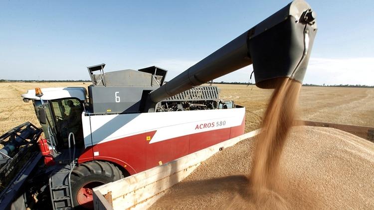La semana pasada, Brasil eliminó aranceles para la importación de 750.000 toneladas de trigo, es decir, para 12% del total exportado por Argentina (Reuters)