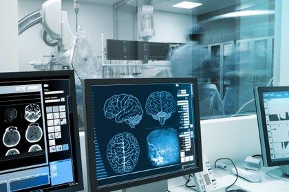 El hallazgo podría traducirse en la elaboración de drogas para paliar los síntomas de estas patologías (Shutterstock)