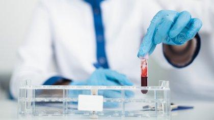 Los estudios también se centralizaron en cáncer (Shutterstock)