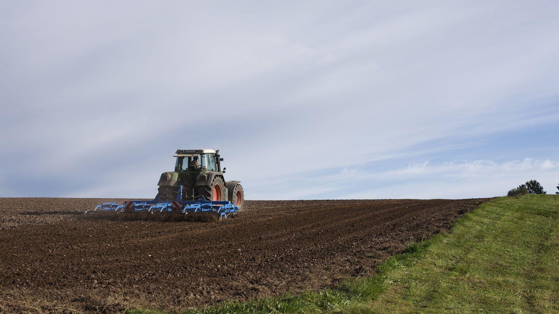 Se incrementó las consultas de productores argentinos para invertir en Uruguay. Las trabas por la pandemia para concretar los negocios