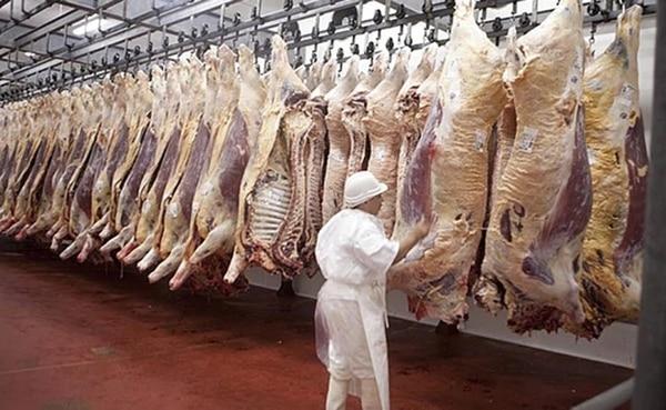 Resultado de imagen para Argentina volverá a exportar carne a Estados Unidos después de 17 años