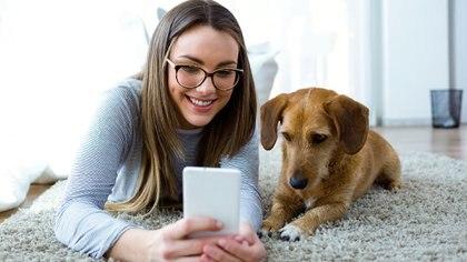 El estudio elaboró un nuevo cálculo en base a la dimensión del animal: los más pequeños viven más que los perros más grandes(Getty)