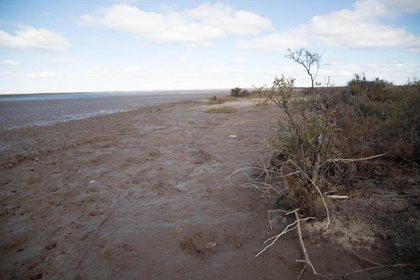 El cuerpo fue hallado en una zona de cangrejales y canales de agua de mar y barro (Lihueel Althabe)