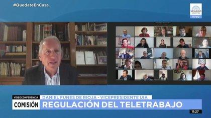 Daniel Funes de Rioja, de la UIA, en la reunión de la Comisión de Trabajo del Senado que trató el teletrabajo