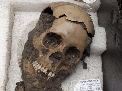 Una calavera descubierta en un templo sagrado azteca (AP)