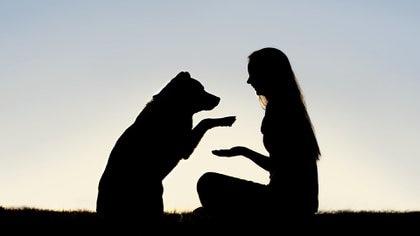 Más de la mitad de todos los nombres de mascotas son nombres humanos o apodos. La gente en gran parte nombra a sus animales como se nombrarían a sí mismos (Getty Images)