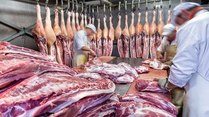 El 70% de la carne de cerdo nacional se exporta con destino a China. Foto: (Archivo)
