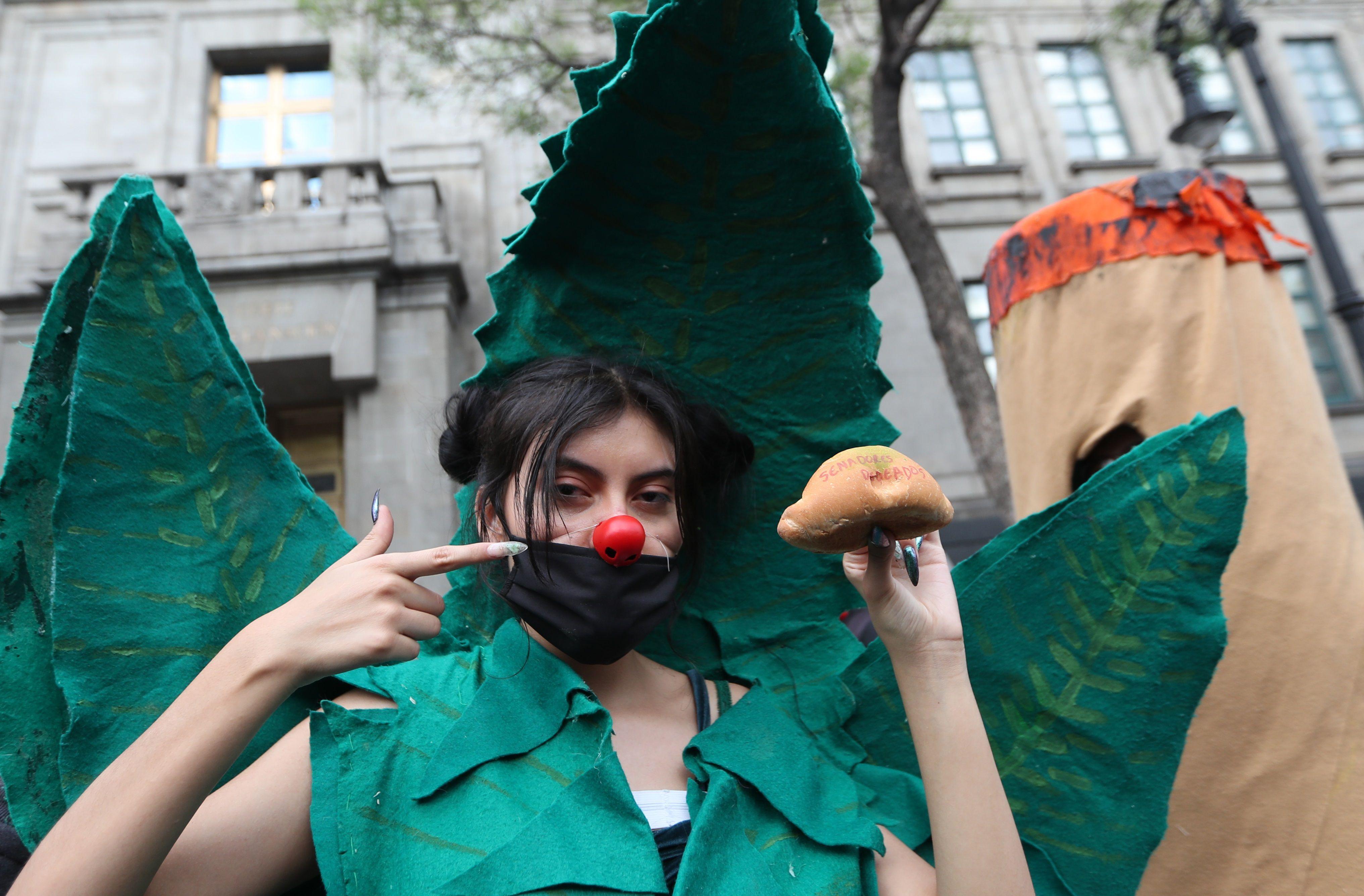 Una activista se disfraza hoy de hoja de cannabis durante una protesta frente a la Suprema Corte de Justicia, en Ciudad de México (México). EFE/ Mario Guzmán