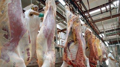 """Especialistas sostienen que en """"el mercado saben que si se requiere más carne para la exportación se deberá apostar a la liquidación de stock, lo que puede resultar malo para el negocio cárnico local"""" (NA)."""