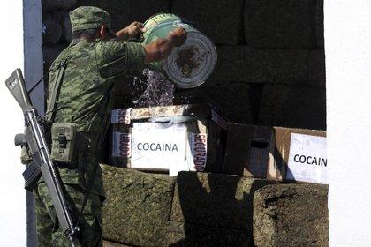La Sedena tuvo un declive considerable en decomisos de droga en los primeros 6 meses de gobierno. (Foto: Cuartoscuro)