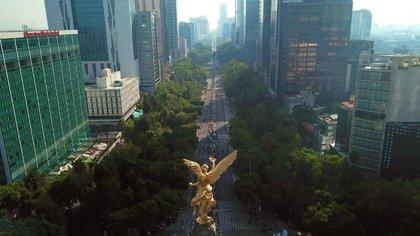 El Ángel de la Independencia fue testigo del paso de las y los maratonistas por Av. Paseo de la Reforma (Foto: @GobCDMX)