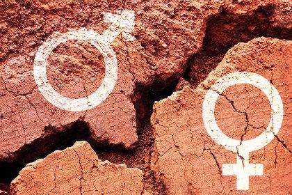 """La brecha de género también se ve en medicina: hasta hace 25 años, casi todas las investigaciones se hacían en varones y sus resultados se extrapolaban a las mujeres"""" (iStock)"""