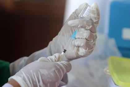 México tiene acuerdos para recibir justamente vacunas contra COVID-19 (Foto: EFE/EPA)