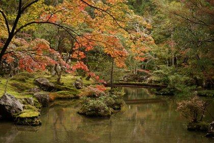 En 1994 fue declarado Patrimonio de la Humanidad por la Unesco como parte de los Monumentos históricos de la antigua Kioto (Foto: Akuppa John Wigham)
