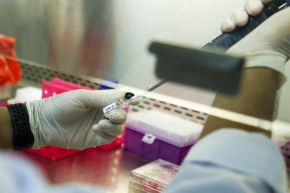 En paralelo a la carrera para encontrar una vacuna contra el nuevo coronavirus, las grandes compañías farmacéuticas también compiten para hallar lo antes posible anticuerpos monoclonales, un arma capaz de neutralizarlo (EFE)