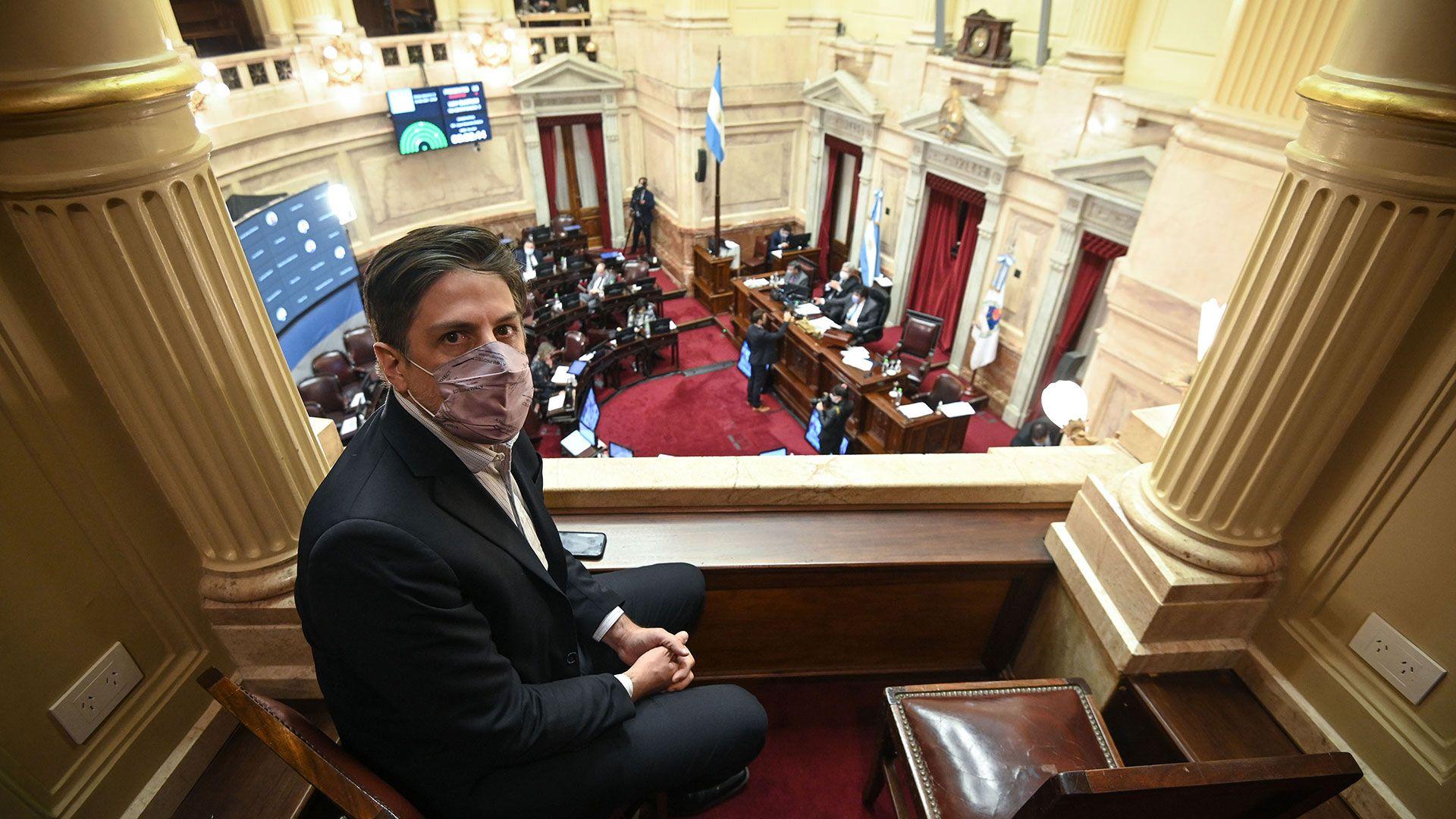 Juan-Cabandie-Nicolas-Trotta-Sesion-remota-Senado