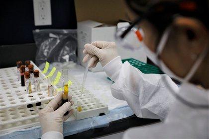 Ensayos clínicos para una vacuna contra el covid-19 en los Centros de Investigación de América en Florida (Bloomberg)