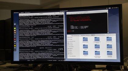 La deep web se ha convertido en un lugar donde el narco opera libremente (Foto: archivo)