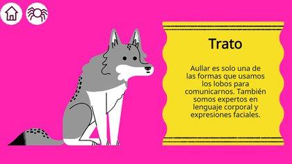 Lobo (Foto: Google)