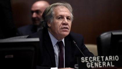 Luis Almagro (Olivier Douliery / AFP)