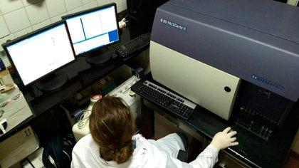 El desarrollo de la vacuna de la UBA está relacionado con los puntos clave de los virus llamados epitopes
