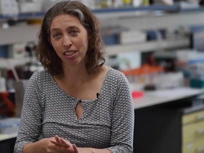 La doctora Noam Stern-Ginossar, investigadora principal del Departamento de Genética Molecular de la institución (Foto: Instituto Weizmann)
