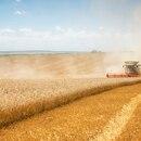 Se proyecta un área de siembra de 6.400.000 hectáreas, 200.000 más que la campaña anterior