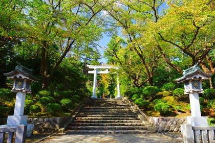 Chitetsu Watanabe reside en la ciudad de Niigata, la ciudad japonesa más grande en la costa del mar de Japón (Shutterstock)