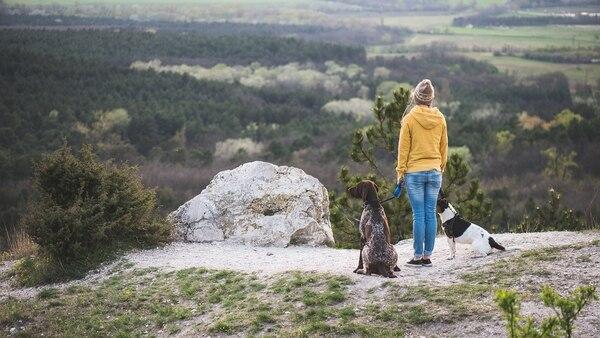 Los paseos son aconsejables realizarlos bajo la luz del sol (iStock)